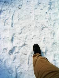 Gespür für Schnee?
