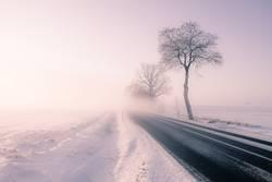 Straße in den Nebel