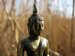 Buddha in Reed