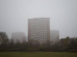 für dich solls bunte Bilder regnen (im Nebel)