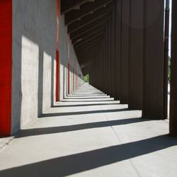 colonnade and the light of day
