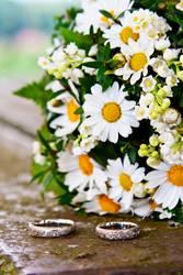 Hochzeit & Gänseblümchen