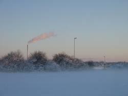 _winter-rauch