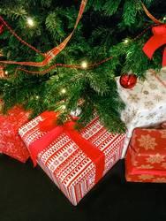 Weihnachtsgeschenke für die Familie (I)