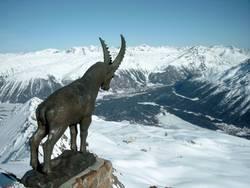 Winterlandschaft Schweiz Engadin Piz Nair