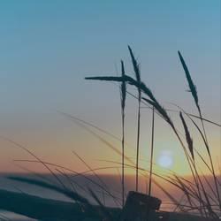 Nachmittag Sonnenuntergang am Strand