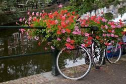 Fahren Sie auf eine Brücke Amsterdam, die Niederlande rad