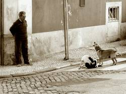 Lissaboner Straßenszene