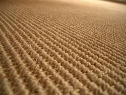 Der Teppich (?)