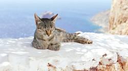 Chiller in Griechenland