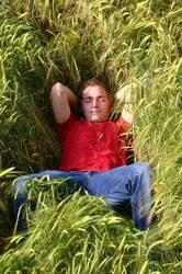 Schlafen im Gerstenfeld