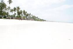Zanzibar - Weißer Traumstrand in Afrika