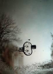 Fahrrad ins Wasser gefallen