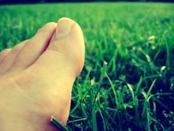 feet me