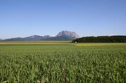 Traunstein-Panorama