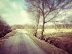 Ipweger Moor