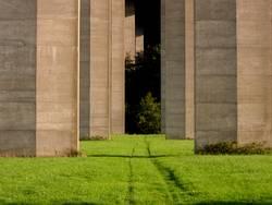 bäume aus beton 1
