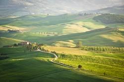 Green Tuscan hills