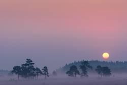 Sunrise at Domaine de Bérinzenne