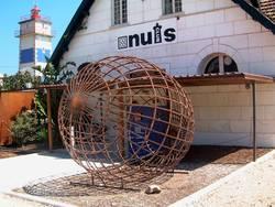 Coconuts Disco