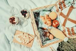 Picknick mit Früchten, Orangensaft, Quesadilla und Käsekuchen
