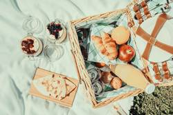 Picnic With Fruits, Orange Juice, Quesadilla And Cheesecake