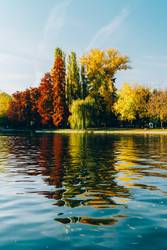 Autumn Season In Bucharest Park Landscape