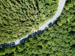 Aerial View Of Road Running Through Carpathian Mountains Forest