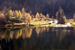 Gespiegelt im Bergsee