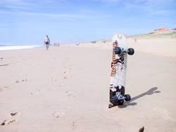 Surfen oder Skaten?