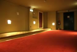 der teppich ist rot