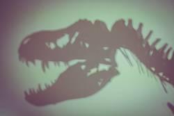 Dinosaurier T. rex Silhouette