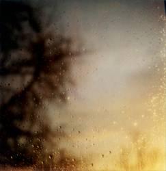 after Rain 1