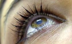 Mein Blick