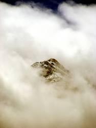 Pihapper im Nebel
