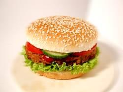 lecker hamburger :: lecker hamburger