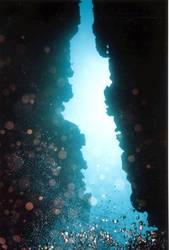 Korallenspalte