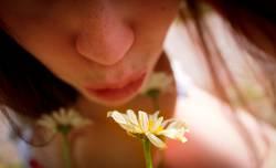 Blumenromanze