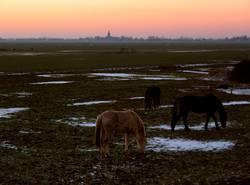 Blick auf Nes aan de Amstel, Holland
