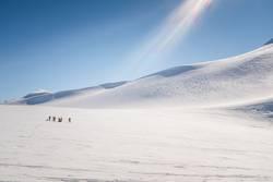 Gruppe von Skifahrern in Gletscherlandschaft