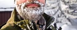 Nahaufnahme eines Bartes mit viel Eis, Skandinavien
