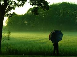 early morning | umbrella pt.3