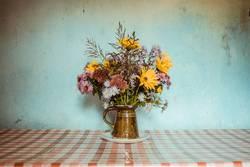 Blumen in Frankreich.