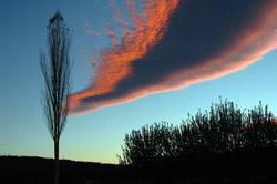 pink-sky-line