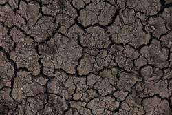Klimawandel zum anfassen