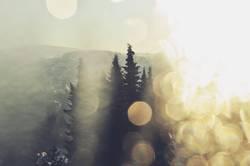 Winterfenster II