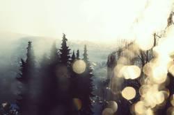 Winterfenster I