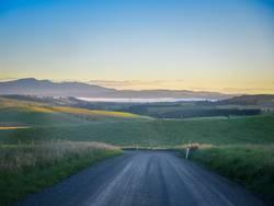 Guten morgen NZ