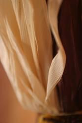 Maisdetail