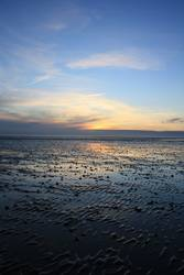 Sonnenuntergang auf dem Meeresgrund